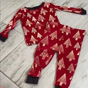 Burts Bees Baby Holiday pajama set